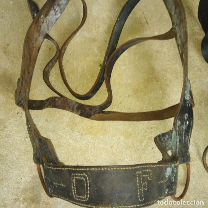 Antigüedades: Pareja de Cabezadas para caballerias - Foto 2 - 191751501