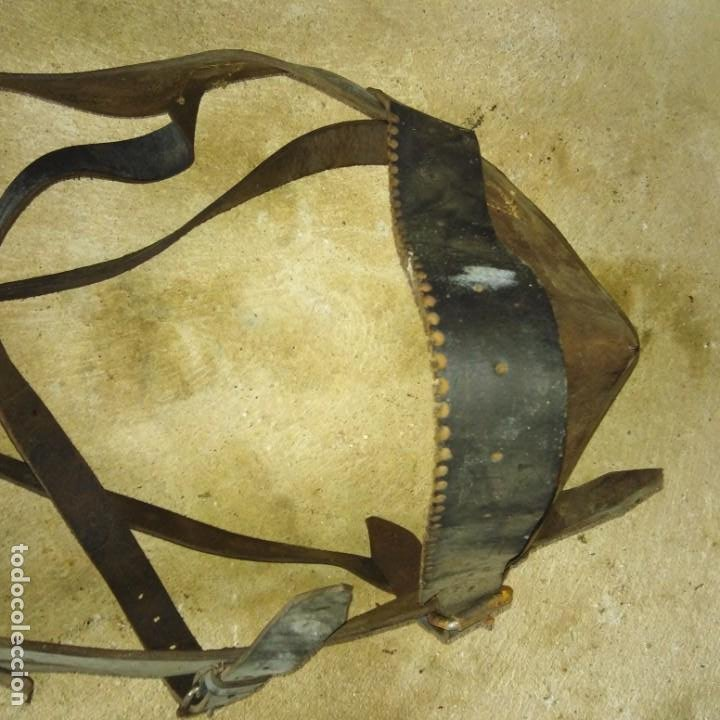 Antigüedades: Pareja de Cabezadas para caballerias - Foto 9 - 191751501