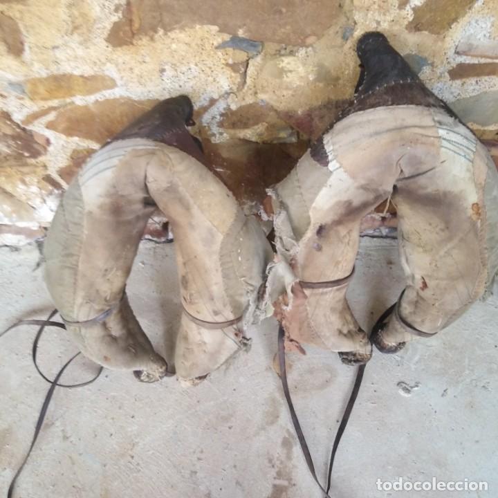 Antigüedades: Antigua pareja de colleras de cuero del siglo xix - Foto 4 - 191752521