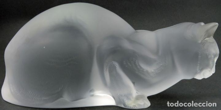 Antigüedades: Chat Couche en vidrio prensado cristal glace tallado Lalique Francia firmado hacia 1930 - Foto 7 - 191790165