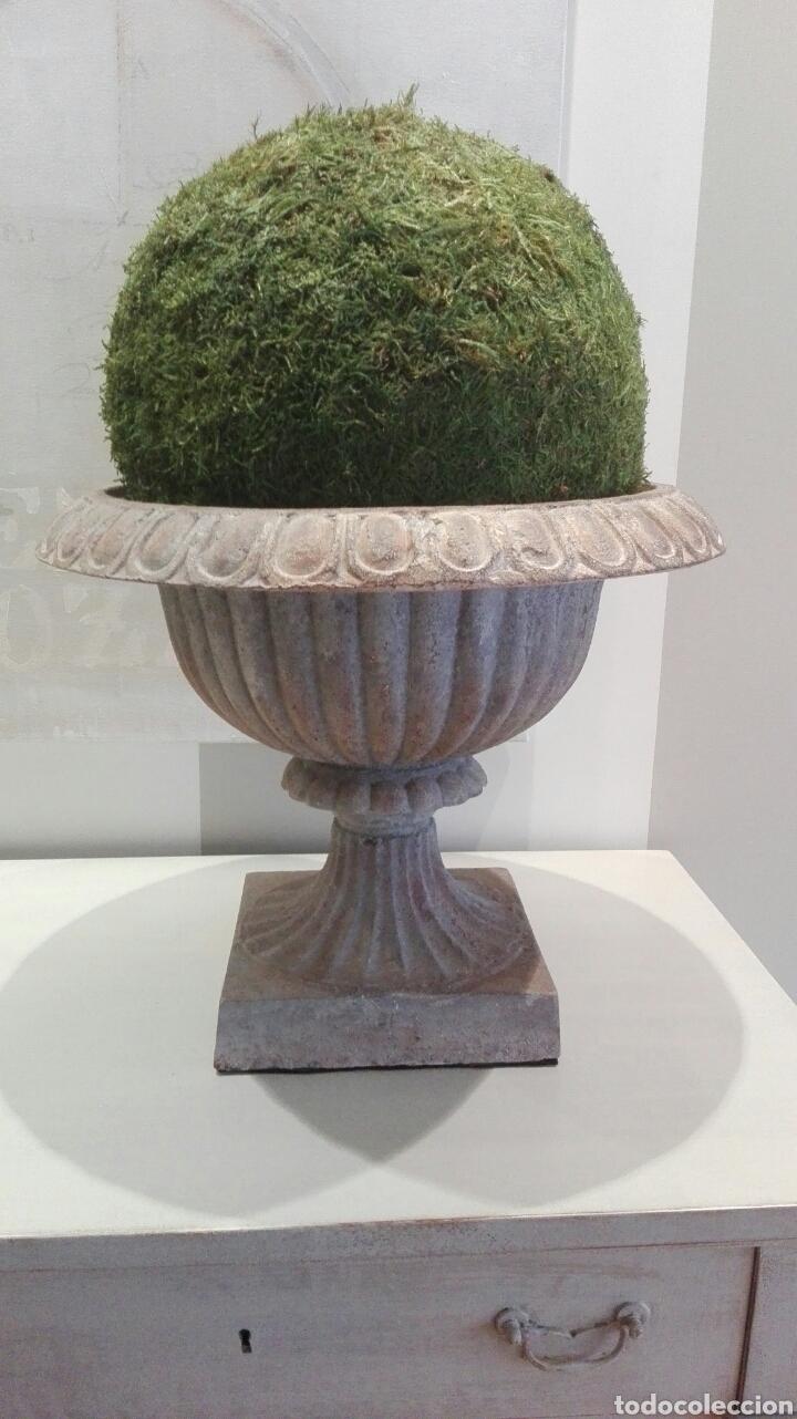 Antigüedades: Magnífica pareja de copas de jardín francesas del XIX en hierro fundido, altura 38 y diametro 36. - Foto 2 - 192470166