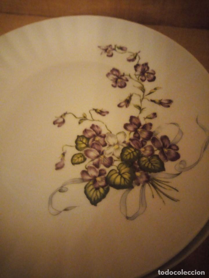 Antigüedades: Lote de 6 platos de postre de porcelana wunsidiedel rosenthal bavaria germany - Foto 3 - 194243966
