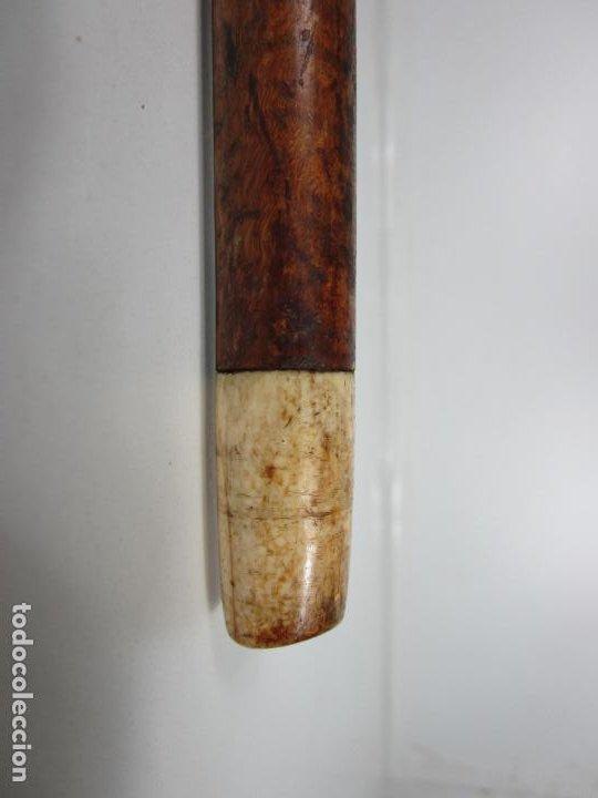 Antigüedades: Antiguo Bastón - Empuñadura Bola de Marfil - Caña de Malaca - Finales S. XIX - Foto 3 - 194502440