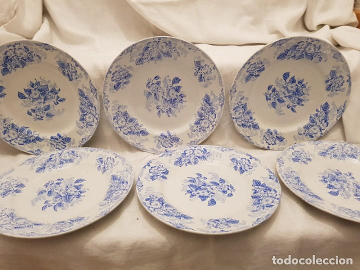 6 PLATOS LLANOS TERRE DE FER ST AMAND S XIX. FRANCIA (Antigüedades - Porcelana y Cerámica - Francesa - Limoges)