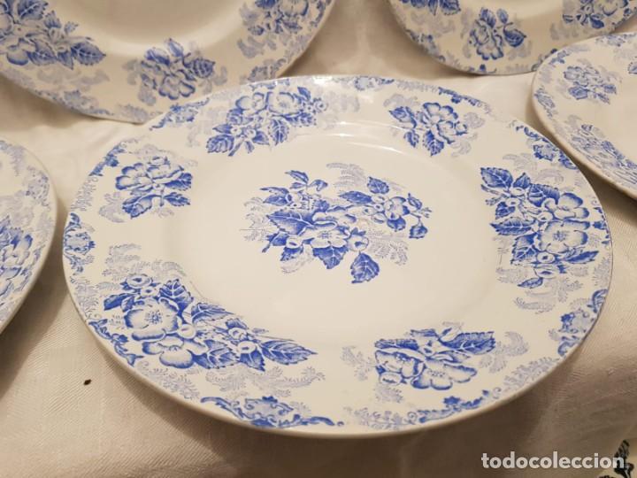 Antigüedades: 6 platos llanos terre de fer st amand s XIX. Francia - Foto 2 - 194544383