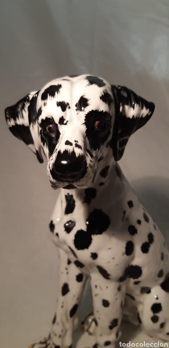 Antigüedades: Precioso perro Dalmata de porcelana , 22cm x 17cm firmado C.Martino - Foto 6 - 194684883