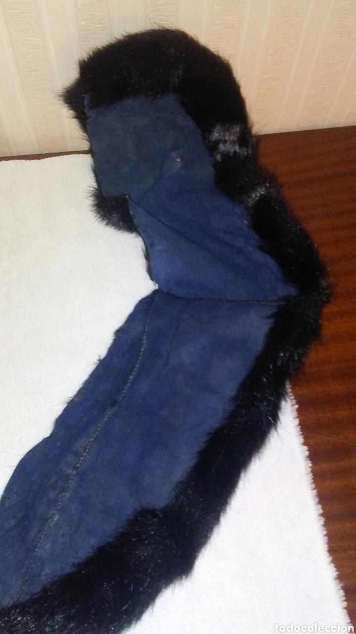 Antigüedades: Lote de 4 cuellos de piel para abrigo (ver fotos y leer descripcion ). - Foto 2 - 194777485