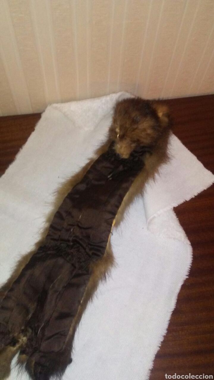 Antigüedades: Lote de 4 cuellos de piel para abrigo (ver fotos y leer descripcion ). - Foto 3 - 194777485