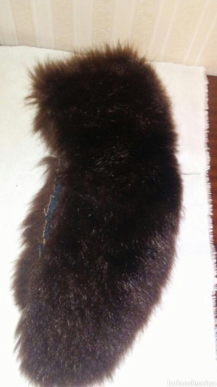 Antigüedades: Lote de 4 cuellos de piel para abrigo (ver fotos y leer descripcion ). - Foto 10 - 194777485