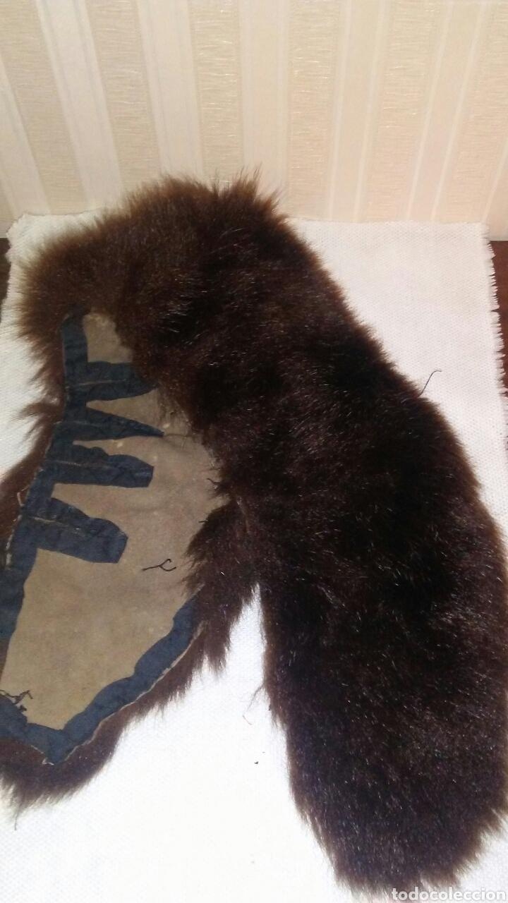 Antigüedades: Lote de 4 cuellos de piel para abrigo (ver fotos y leer descripcion ). - Foto 14 - 194777485