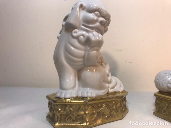 Antigüedades: Figuras Porcelana-España- Algora - Dos Perros Foo - Foto 11 - 194863033