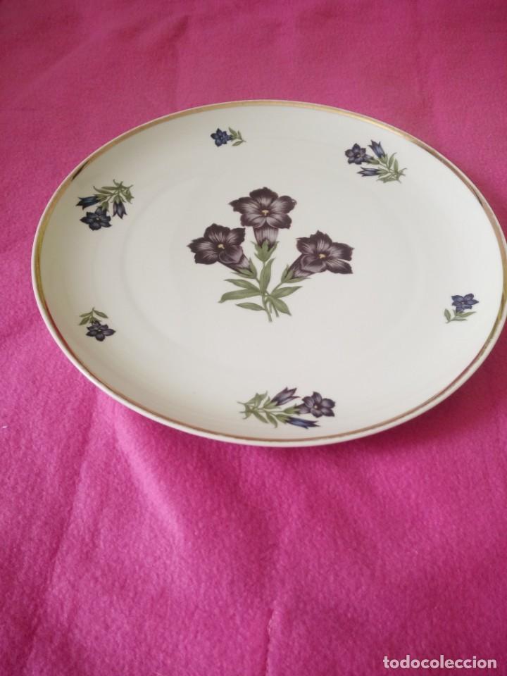 Antigüedades: antiguo plato porcelana cottier freres zwitzerland - Foto 3 - 195365601
