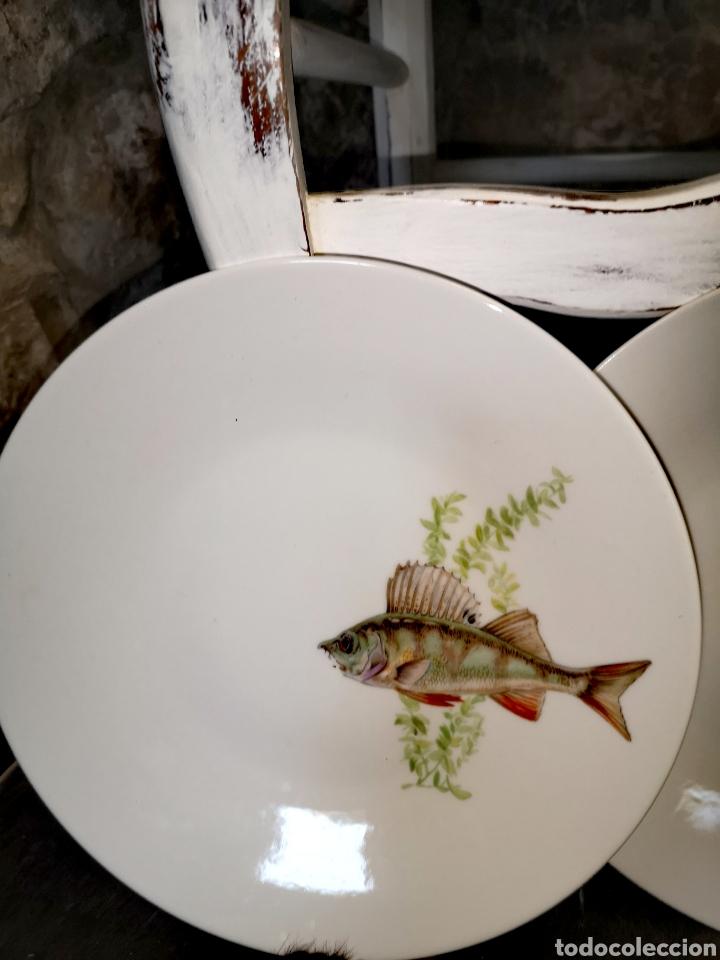 Antigüedades: Juego de platos y bandeja para pescado - Foto 3 - 195516401