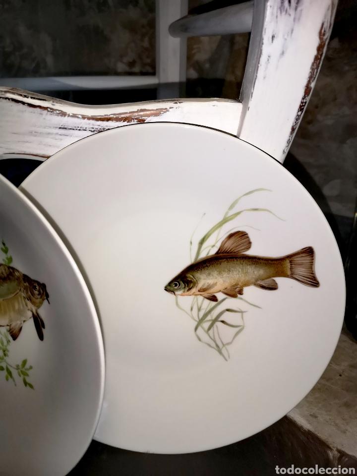 Antigüedades: Juego de platos y bandeja para pescado - Foto 5 - 195516401