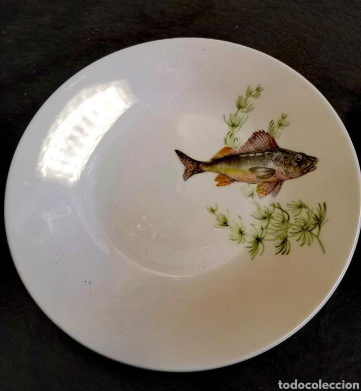 Antigüedades: Juego de platos y bandeja para pescado - Foto 6 - 195516401