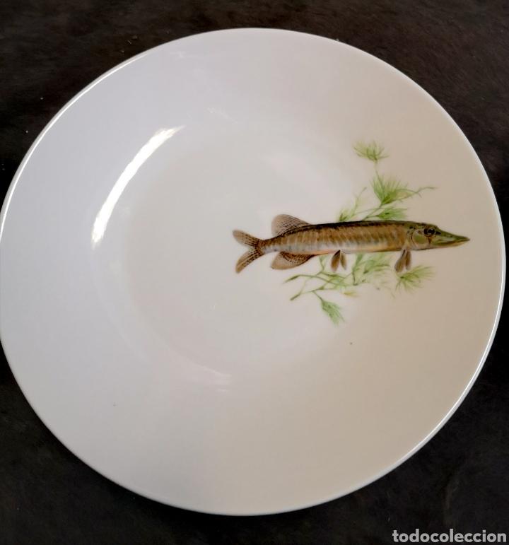 Antigüedades: Juego de platos y bandeja para pescado - Foto 7 - 195516401