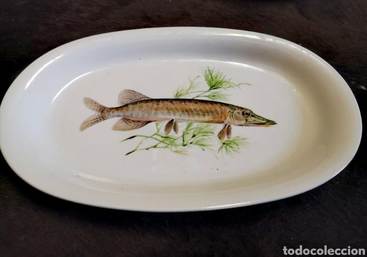 Antigüedades: Juego de platos y bandeja para pescado - Foto 8 - 195516401