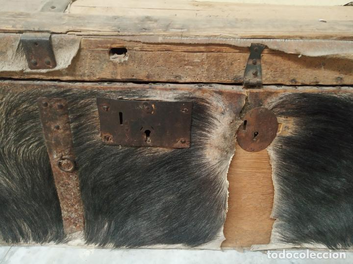 Antigüedades: Gran arca forrada en piel de jabalí al natural. Siglo XVIII. Herrajes y cerraduras originales. - Foto 2 - 195565366