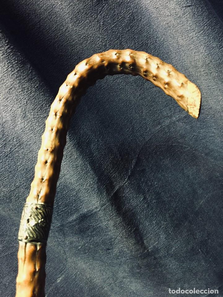 Antigüedades: baston nispero interior vara metalica patina arte popular s xix virola plata labrada 86,5cms - Foto 3 - 195908508