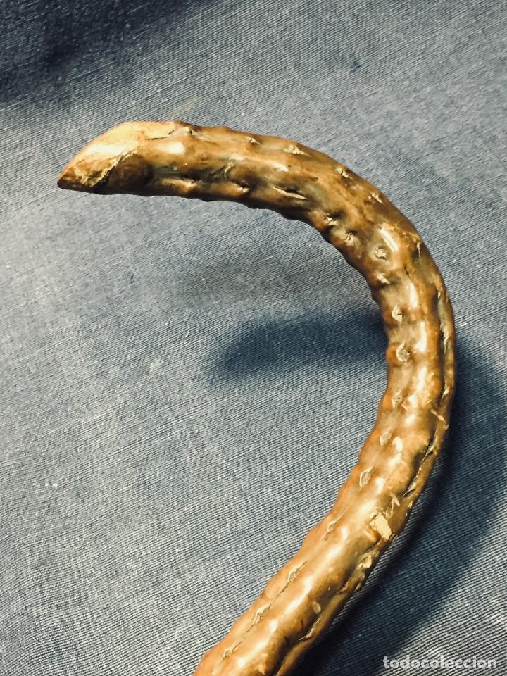 Antigüedades: baston nispero interior vara metalica patina arte popular s xix virola plata labrada 86,5cms - Foto 8 - 195908508