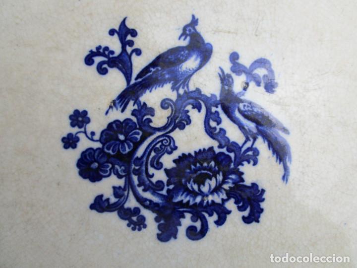 Antigüedades: DE MUSEO! GRAN FUENTE DE SARGADELOS AVES DEL PARAISO AZUL COBALTO CIRCA 1840 - Foto 2 - 198575643