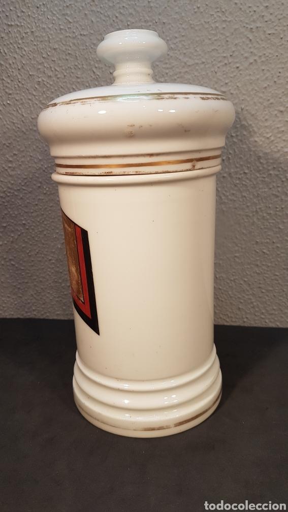 Antigüedades: Bote albarelo frasco de farmacia, época Isabelina, de porcelana posiblemente Limoges. Siglo XIX. - Foto 2 - 198650560