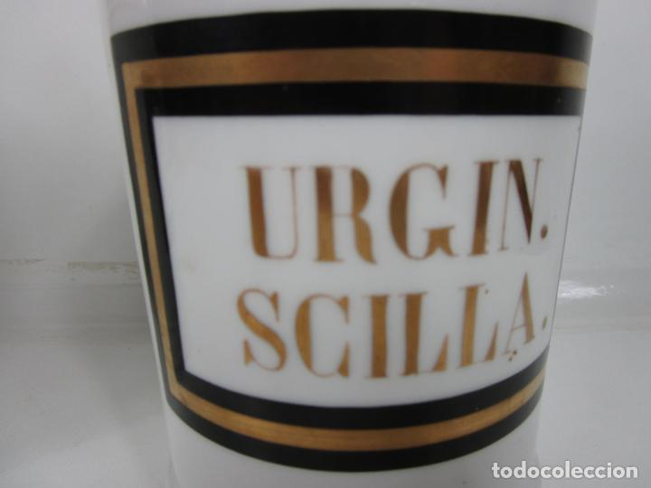 Antigüedades: Botes de Farmacia - Bote, Albarelo - Porcelana - Letras Doradas - S. XIX - Foto 4 - 199088753