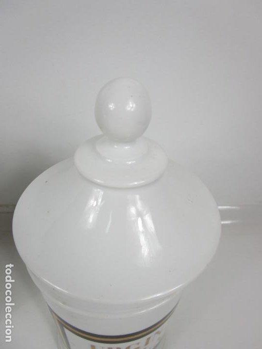 Antigüedades: Botes de Farmacia - Bote, Albarelo - Porcelana - Letras Doradas - S. XIX - Foto 6 - 199088753