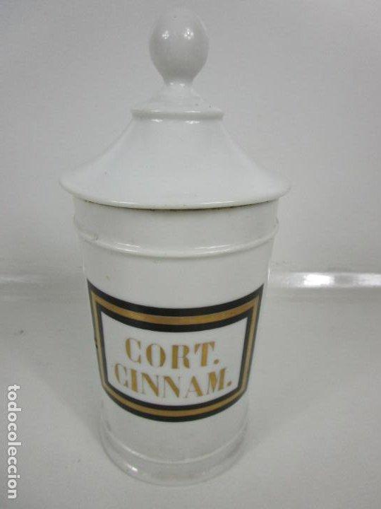 Antigüedades: Botes de Farmacia - Bote, Albarelo - Porcelana - Letras Doradas - S. XIX - Foto 15 - 199088753