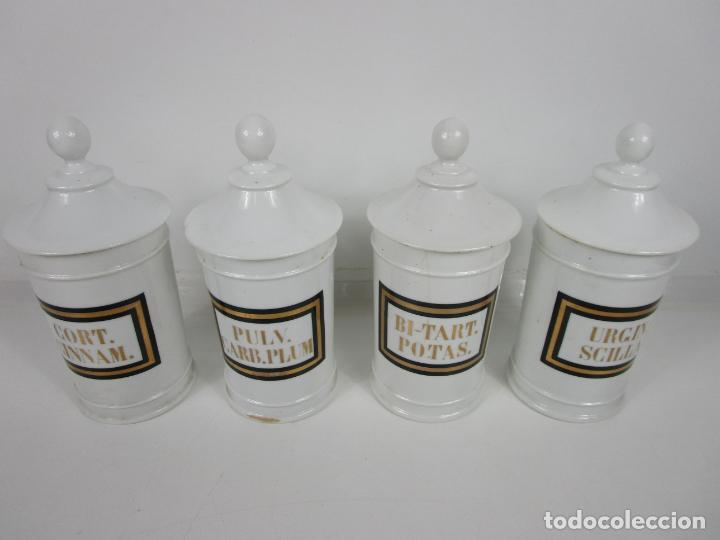 Antigüedades: Botes de Farmacia - Bote, Albarelo - Porcelana - Letras Doradas - S. XIX - Foto 20 - 199088753