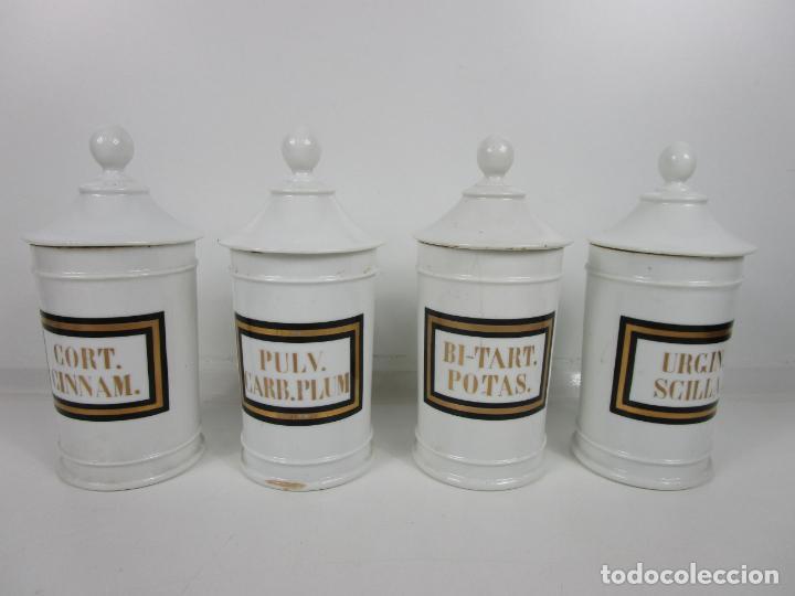 Antigüedades: Botes de Farmacia - Bote, Albarelo - Porcelana - Letras Doradas - S. XIX - Foto 21 - 199088753