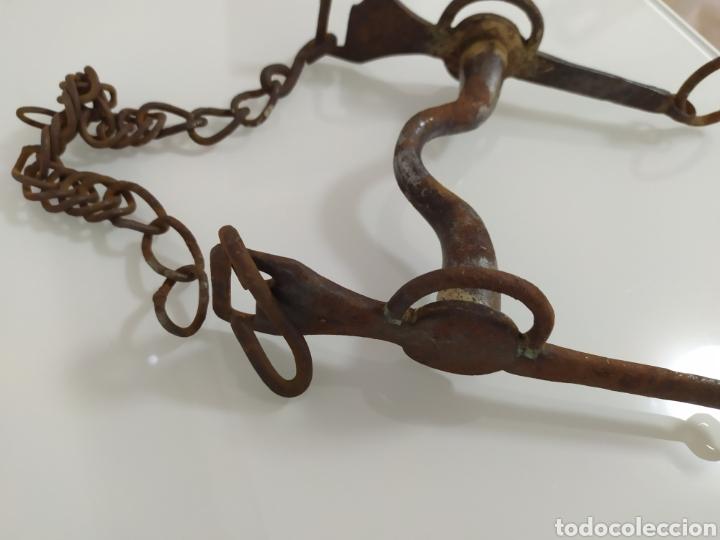 Antigüedades: Antiguo bocado de forja para Caballo de Carabineros - Foto 17 - 199294685