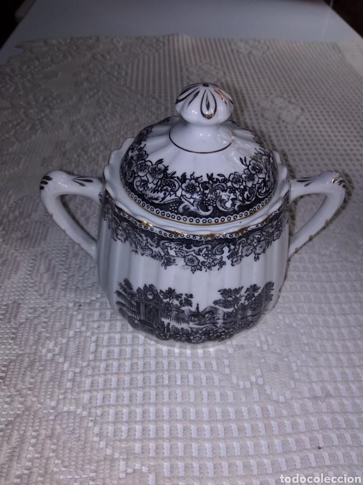 AZUCARERO SANTA CLARA .PAISAJE (Antigüedades - Porcelanas y Cerámicas - Santa Clara)