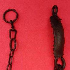 Antigüedades: HOCIQUERA O PERRILLO ANTIGUO DE HIERRO FORJA S. XIX, PARA EQUINOS. 55.750 CMS LONGUITUD CON CADENA.. Lote 201153496
