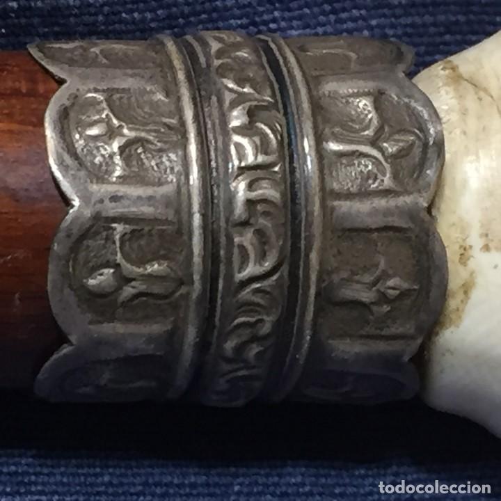 Antigüedades: baston virola plata pomo marfil caballo cabeza calidad ojos vidrio fin s xix ppio s xx 5x11x4cms - Foto 16 - 201164282