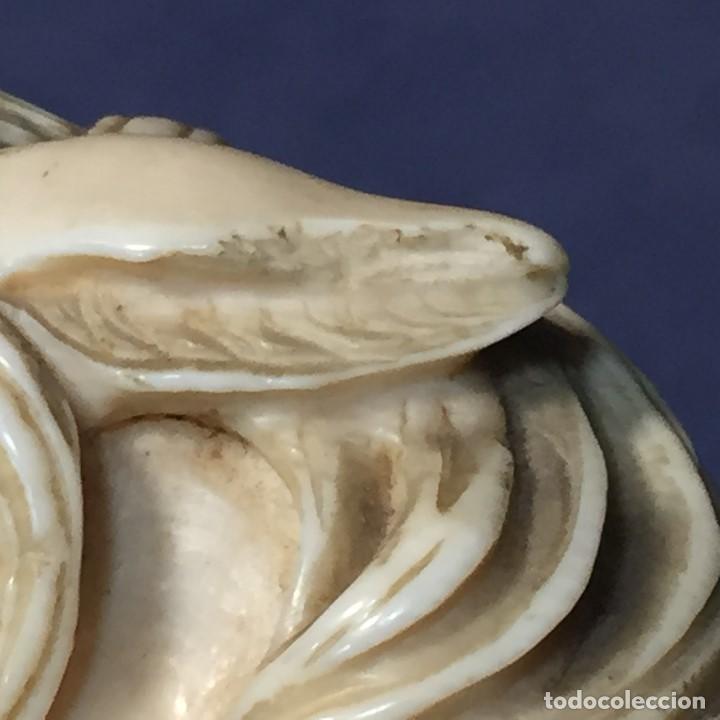 Antigüedades: baston virola plata pomo marfil caballo cabeza calidad ojos vidrio fin s xix ppio s xx 5x11x4cms - Foto 35 - 201164282