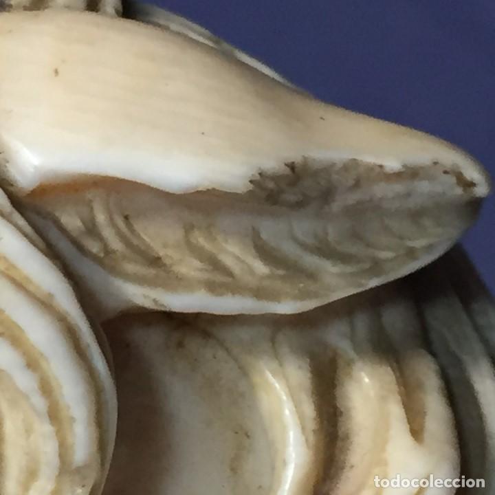 Antigüedades: baston virola plata pomo marfil caballo cabeza calidad ojos vidrio fin s xix ppio s xx 5x11x4cms - Foto 36 - 201164282