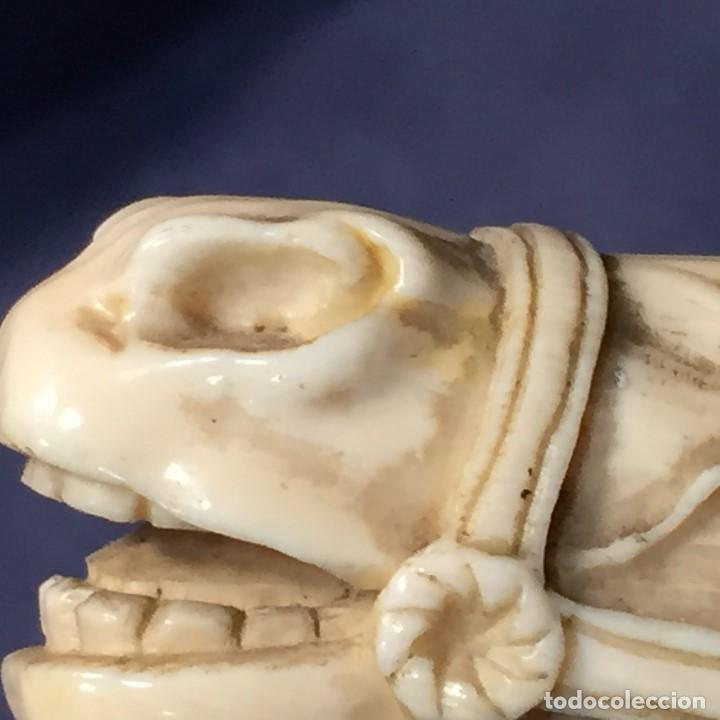 Antigüedades: baston virola plata pomo marfil caballo cabeza calidad ojos vidrio fin s xix ppio s xx 5x11x4cms - Foto 42 - 201164282
