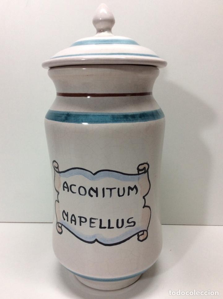 ALBARELO ALBORS 21X12CM ACONITUM NAPELLUS 2500/258 RF5 (Antigüedades - Porcelanas y Cerámicas - Otras)