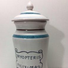 Antigüedades: ALBARELO DRYOPTERIS-MAS FILIX 29X12CM 2500/684 REF3. Lote 202831185