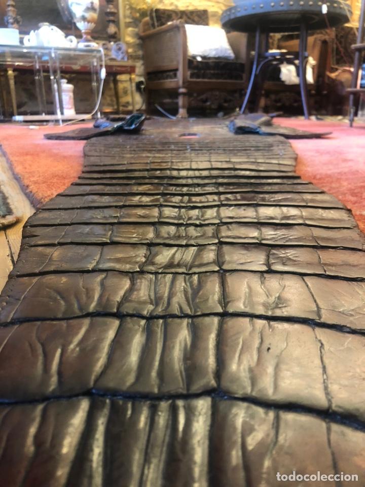 Antigüedades: Antigua Alfombra piel cuero cocodrilo caimán casi 4 metros - Foto 5 - 176649469