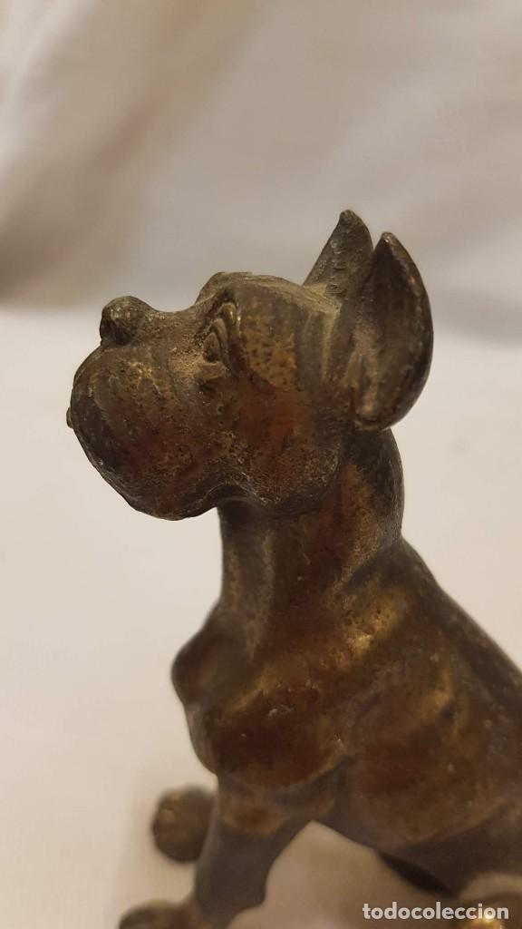 Antigüedades: PERRO DORADO ALTURA 9 CMTS - Foto 8 - 203870385