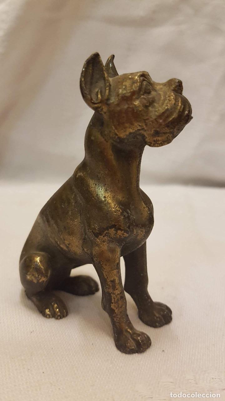 PERRO DORADO ALTURA 9 CMTS (Antigüedades - Hogar y Decoración - Figuras Antiguas)
