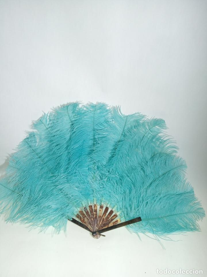Antigüedades: Pomposo abanico de plumas azules e imitación carey. Gran tamaño. 45 cm. de largo. 60 cm. ancho. - Foto 2 - 204331768
