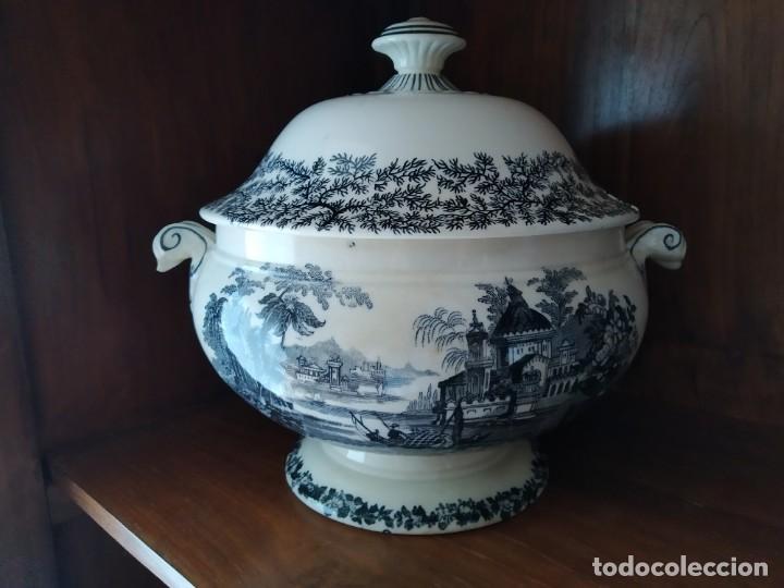 SOPERA PICKMAN (Antigüedades - Porcelanas y Cerámicas - La Cartuja Pickman)