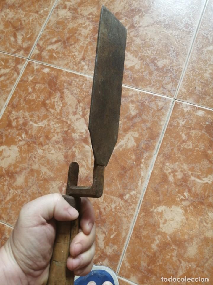 Antigüedades: formon para pezuñas de caballos - Foto 2 - 205320395