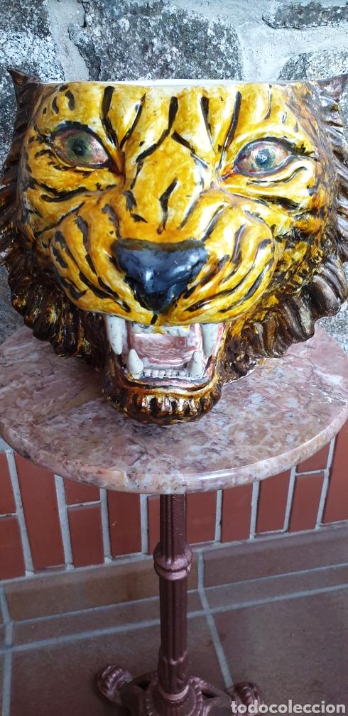TIESTO CABEZA DE TIGRE (Antigüedades - Hogar y Decoración - Maceteros Antiguos)