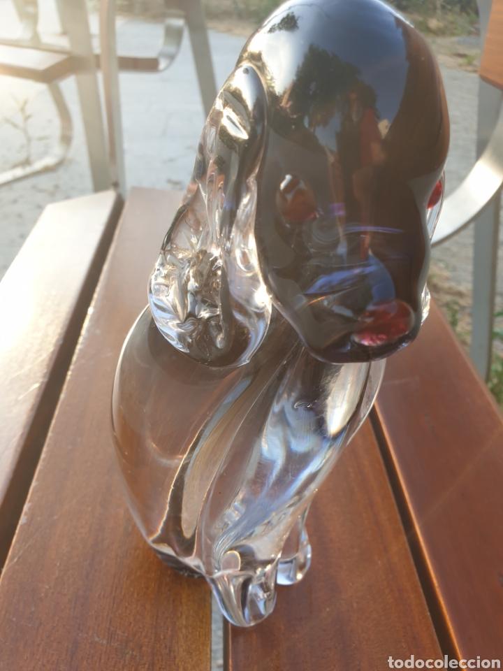 PERRO DE CRISTAL. (Antigüedades - Cristal y Vidrio - Otros)