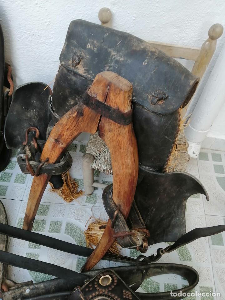 Antigüedades: silla de burro o mula mas jamuga y con correajes etc ver fotos - Foto 4 - 206169942