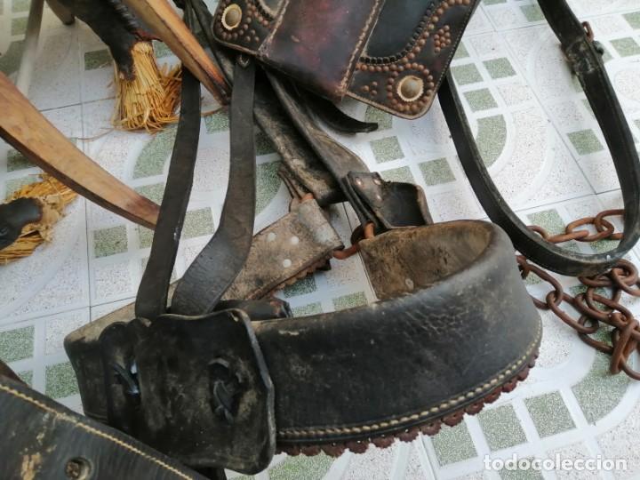 Antigüedades: silla de burro o mula mas jamuga y con correajes etc ver fotos - Foto 6 - 206169942